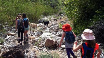 Five Ways to Inspire Teens and Tweens to Hike
