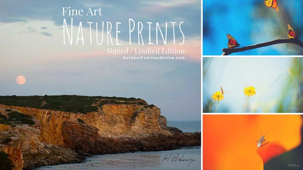 fine art nature prints
