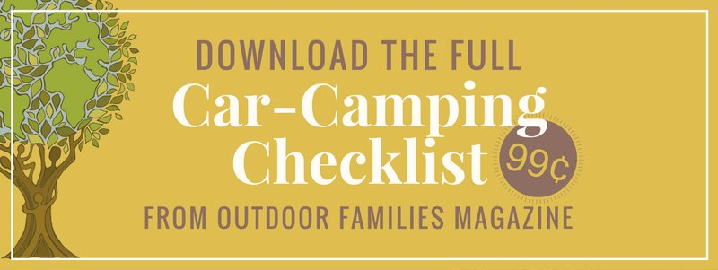 camping bin storage checklist for family car camping