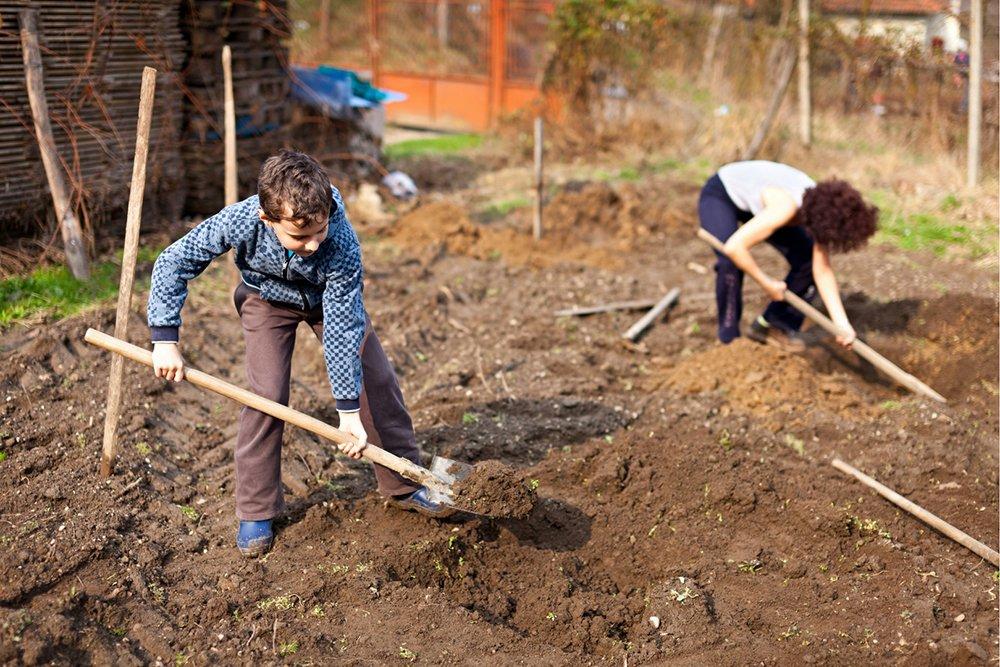 gardening with kids beginner guide