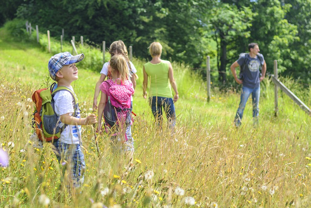 hiking food trail snacks for kids