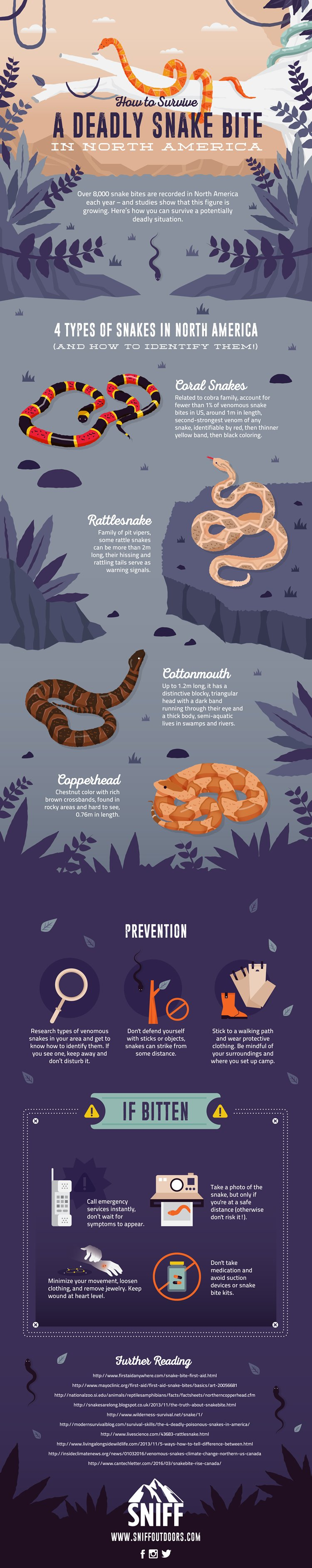 prevent snake bite hiking with kids