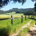 Kid-Friendly Hike Guide [Los Angeles Edition]