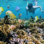Osa Peninsula: A Costa Rica Family Adventure Itinerary