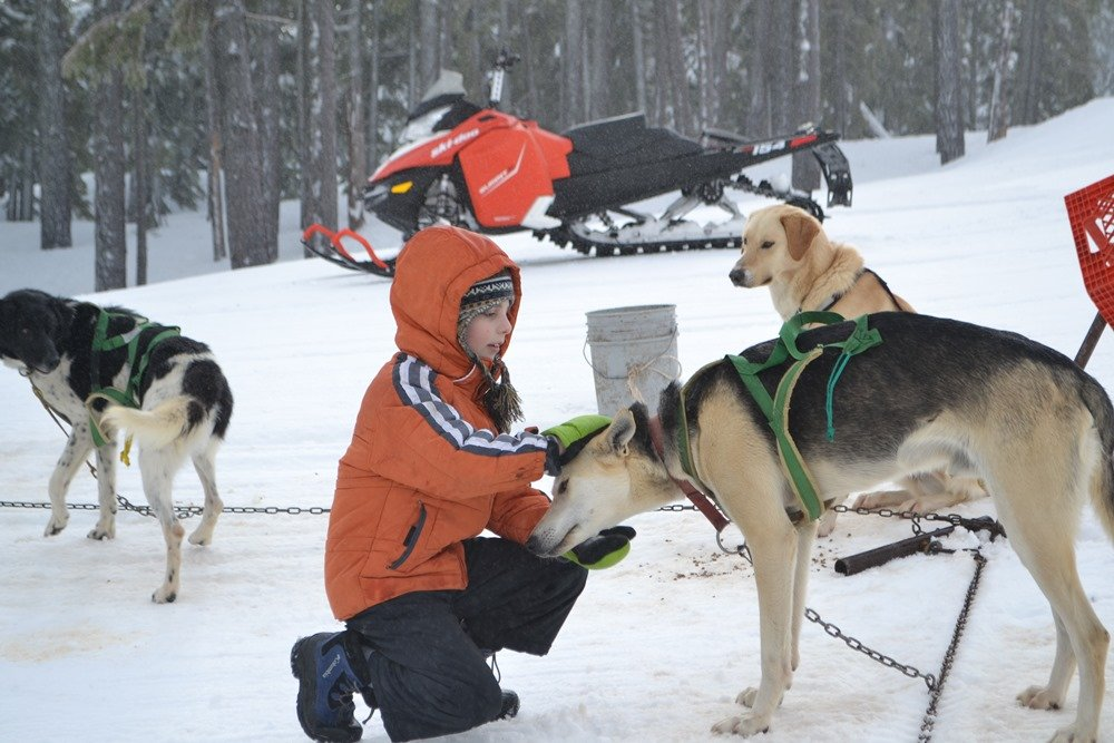Thomas VanCleave takes a moment to greet the dogs.