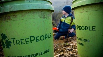 Going Green All Year: St. Patrick's Day suggestions for sustainable living
